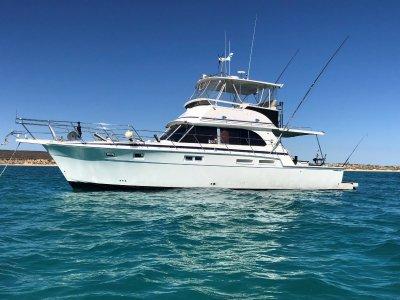 Caribbean 45 Flybridge Cruiser (Extended 48)