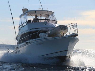 Caribbean 40 Flybridge Cruiser