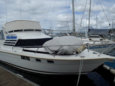 Seaquest 2800 Sportsbridge Cruiser