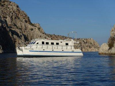 Catamaran Custom build