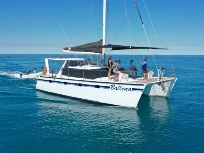 Brady 12.0m Catamaran In AMSA Survey