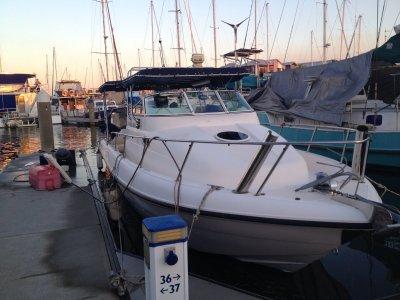 11mtr Bayview Marina Berth