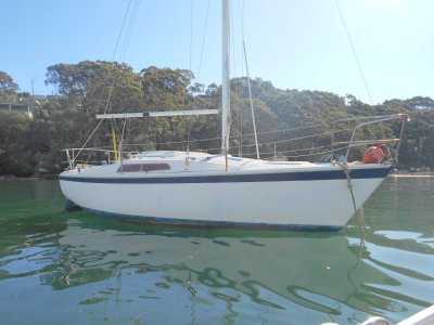 Cole 23 Re Rigged 2018 have invoice! nice fit out & sails