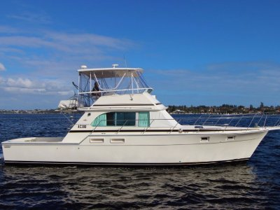 Bertram Caribbean 42 extended to 45 - share with Boat Equity