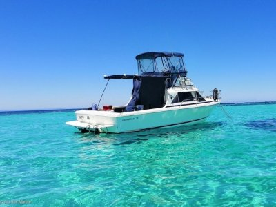 Caribbean 26 Flybridge Cruiser Recently serviced and anti-fouled
