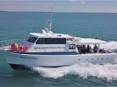 Legend Boats Aluminium Charter Vessel CHARTER VESSELS AND COMPLETE BUSINESS PACKAGE