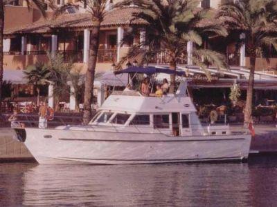 Sea Ranger 448