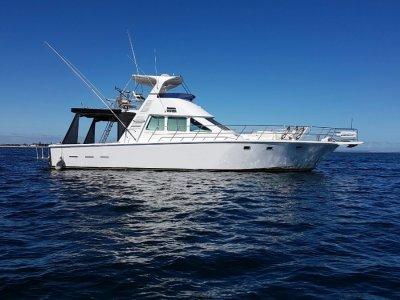 Precision 17 charter vessel