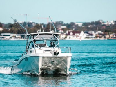 World Cat 266 Sc