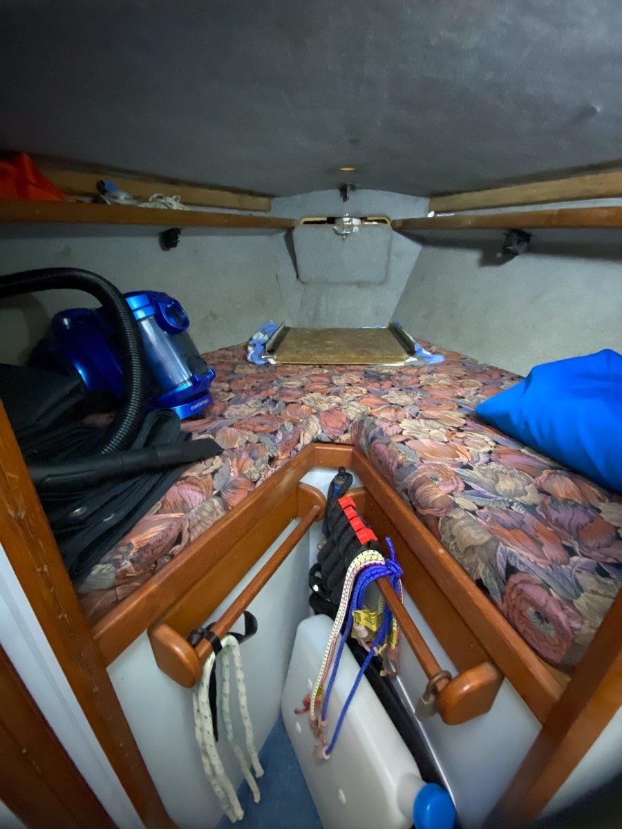 Mottle 33 Sea Jay