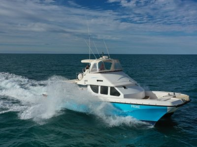 Cougar Cat 15.0 Flybridge