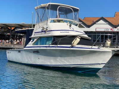 Bertram Caribbean 28 Flybridge