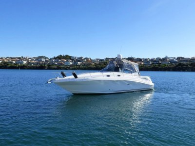 Sea Ray 375 Sundancer - Shaft Drive