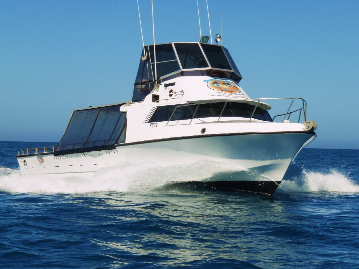 Harriscraft 45 Flybridge Charter Vessel & Business:Charter Vessel Vixen
