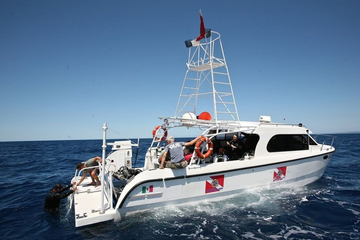 10m Diving / Whale-watching Power Cat