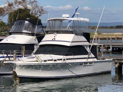 Bertram Caribbean 35 Caribbean 35 Flybridge
