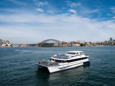Wavemaster 25 M Aluminum Charter Catamaran