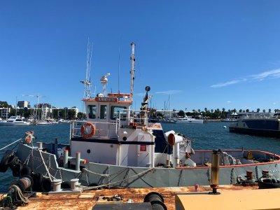 Steel Harbour Tug - In Survey