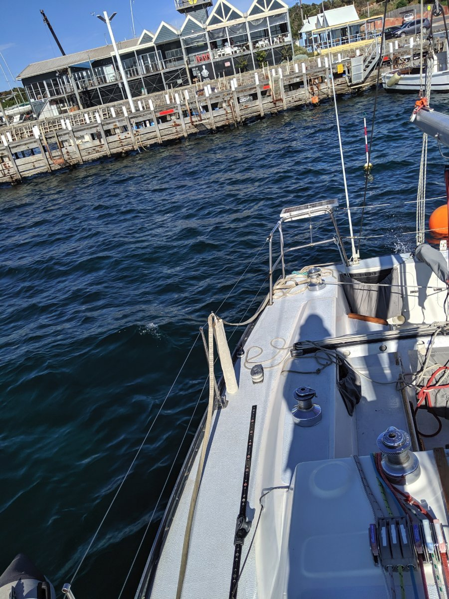 Whiting 36