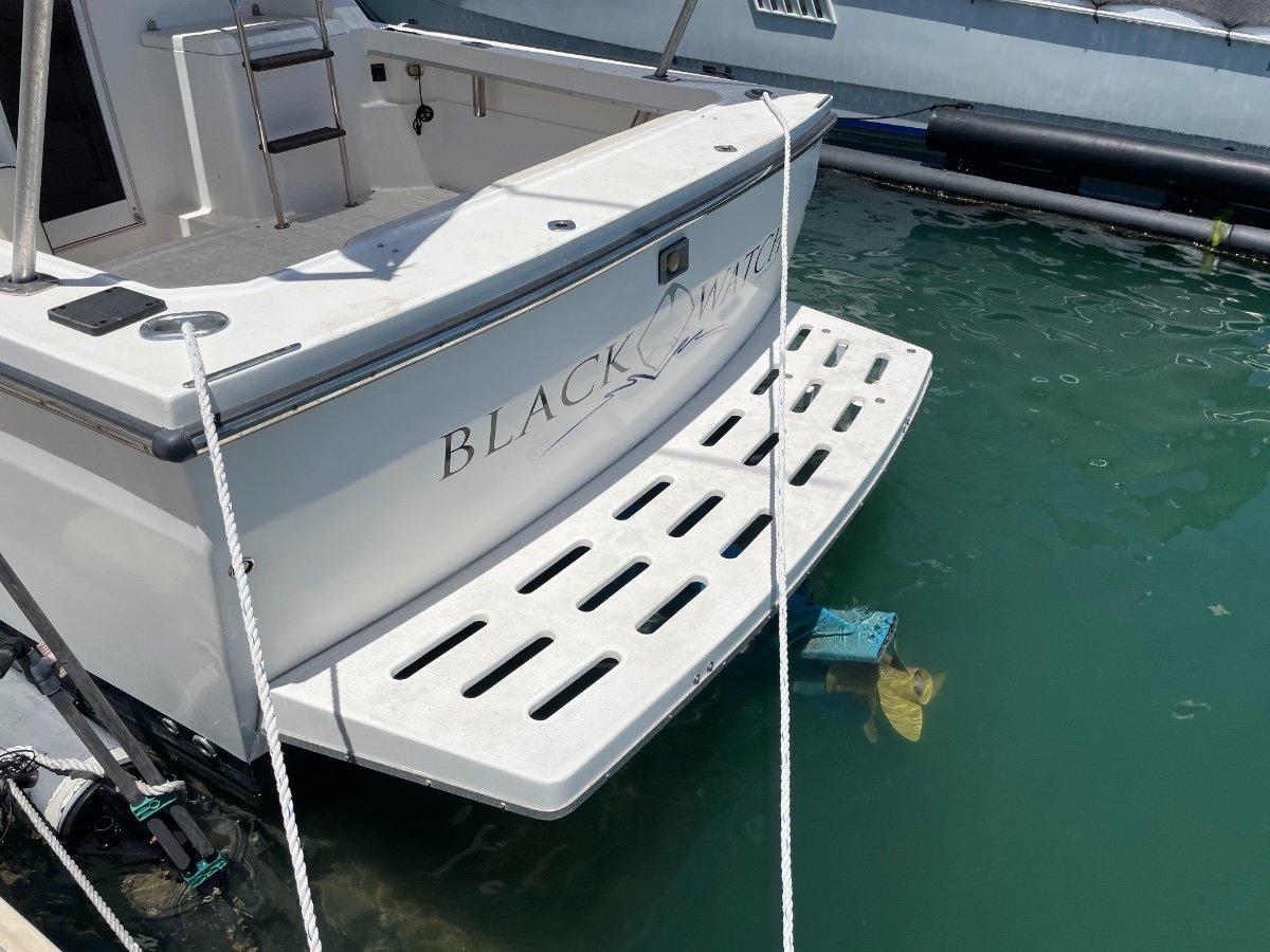 Black Watch 260 Flybridge with Seapen