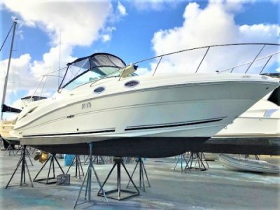 Sea Ray 270 Amberjack FRESH TO MARKET