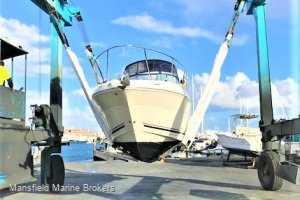 Sea Ray 270 Amberjack FRESH TO MARKET