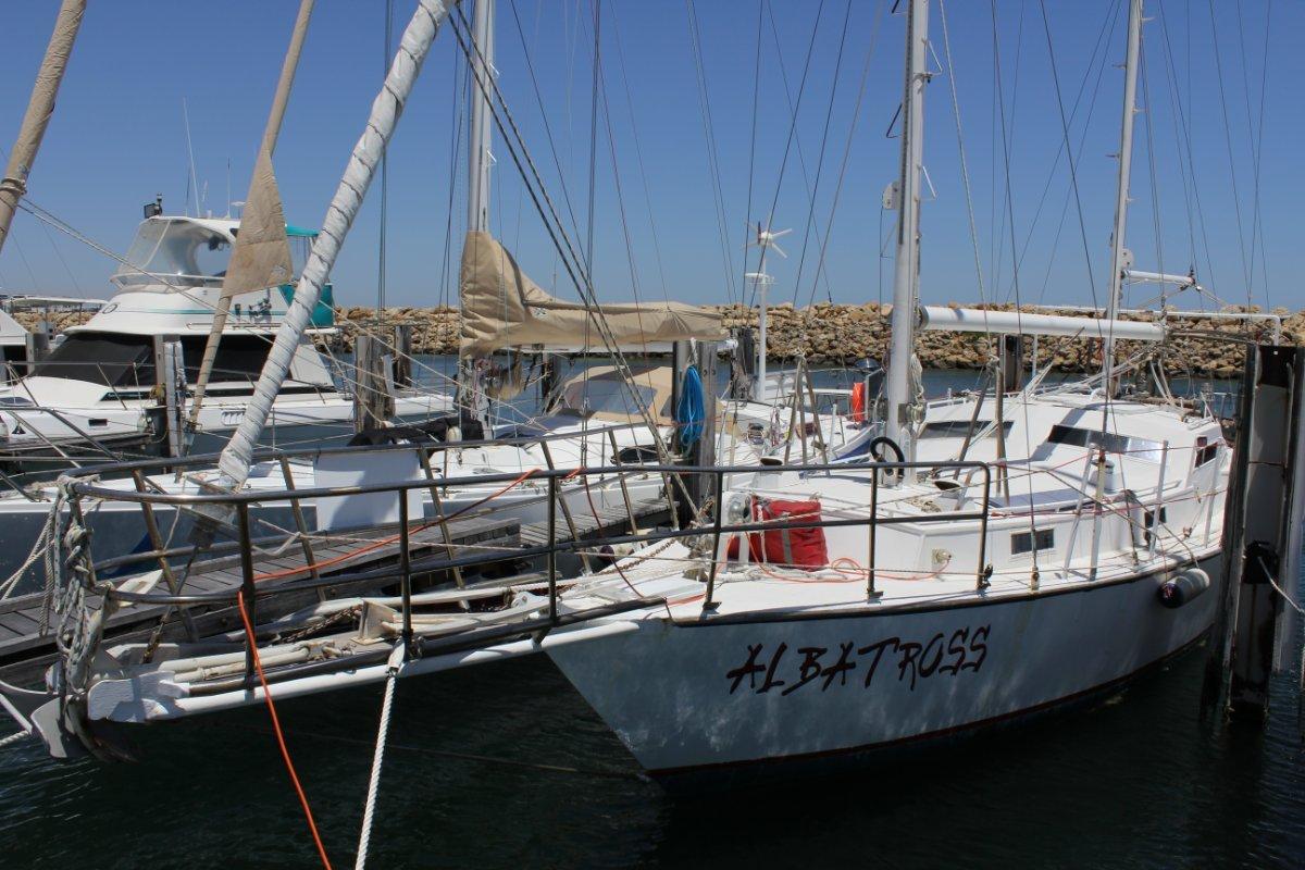 Boro 43 Albatross