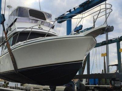 Caribbean 35 Flybridge Cruiser Bertram 35 35' Flybridge