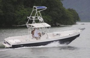 New Apex Panga-26 Sportfishing