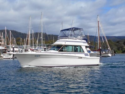 Mariner 34 Flybridge EXCELLENT CONDITION THROUGHOUT!