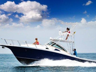 Apex Quepos-350 Sportfishing