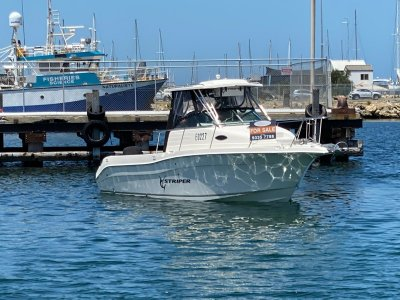 Seaswirl Striper 2601 Walk Around ( NO TRAILER)