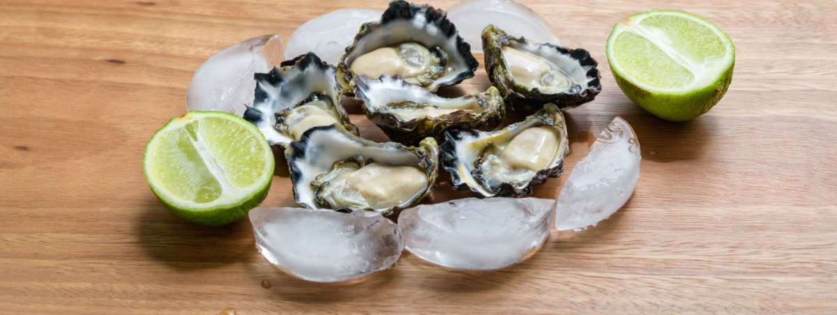 Wanted, Oyster areas around the Mackay district