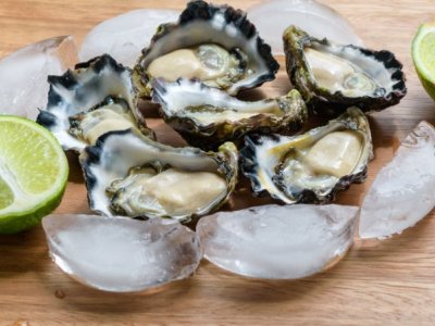 Wanted, Oyster Areas