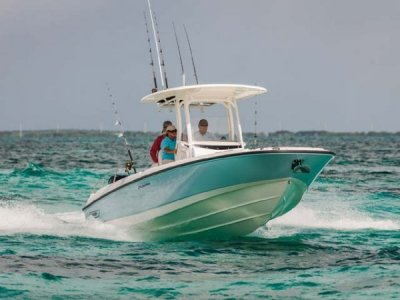 Boston Whaler 270