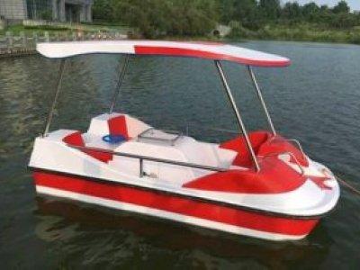 Beston Paddle Boat Custom