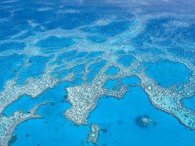 365 Day Skippered Charter Great Barrier Reef Marine Park Tourism Permit