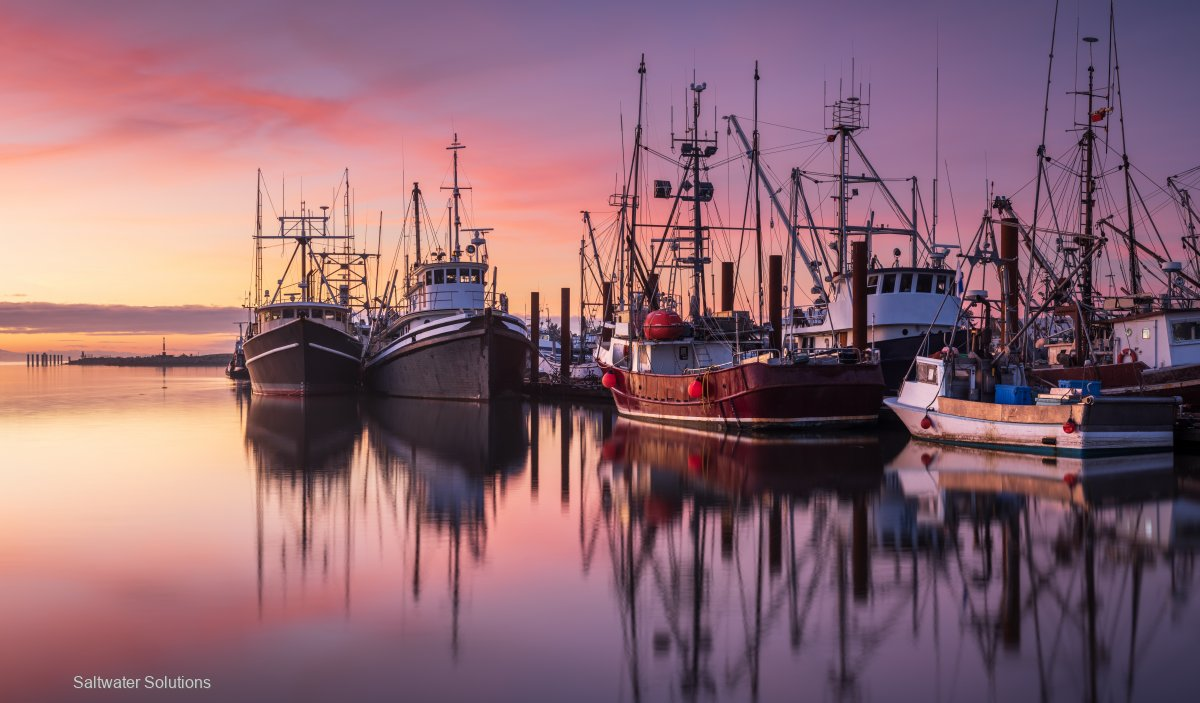 For Sale: Primary commercial fishing licence $13k+GST