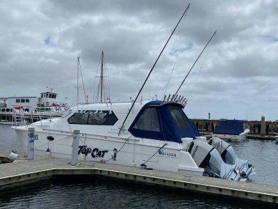 Voyager V930 Sports Cruiser Catamaran