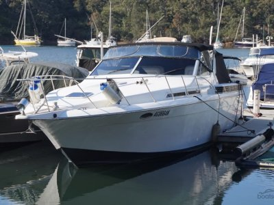Chris Craft Amerosport 412 sports cruiser