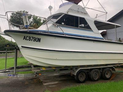 Shark Cat Flybridge 7.1 metre with hard top