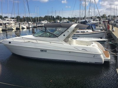 Northern Star Evolution 33- Click for more info...