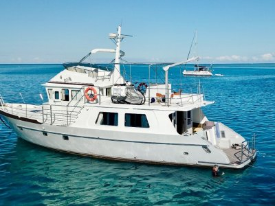 Seahorse 52 Long range cruiser