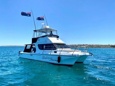 Cougar Cat 36' FLYBRIDGE CRUISER