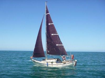 Grey Seal Sailboat