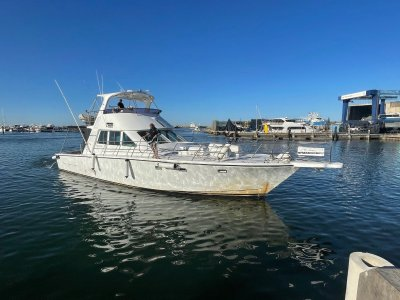 Precision 17 CHARTER VESSEL - BUSINESS INCLUDED- Click for more info...
