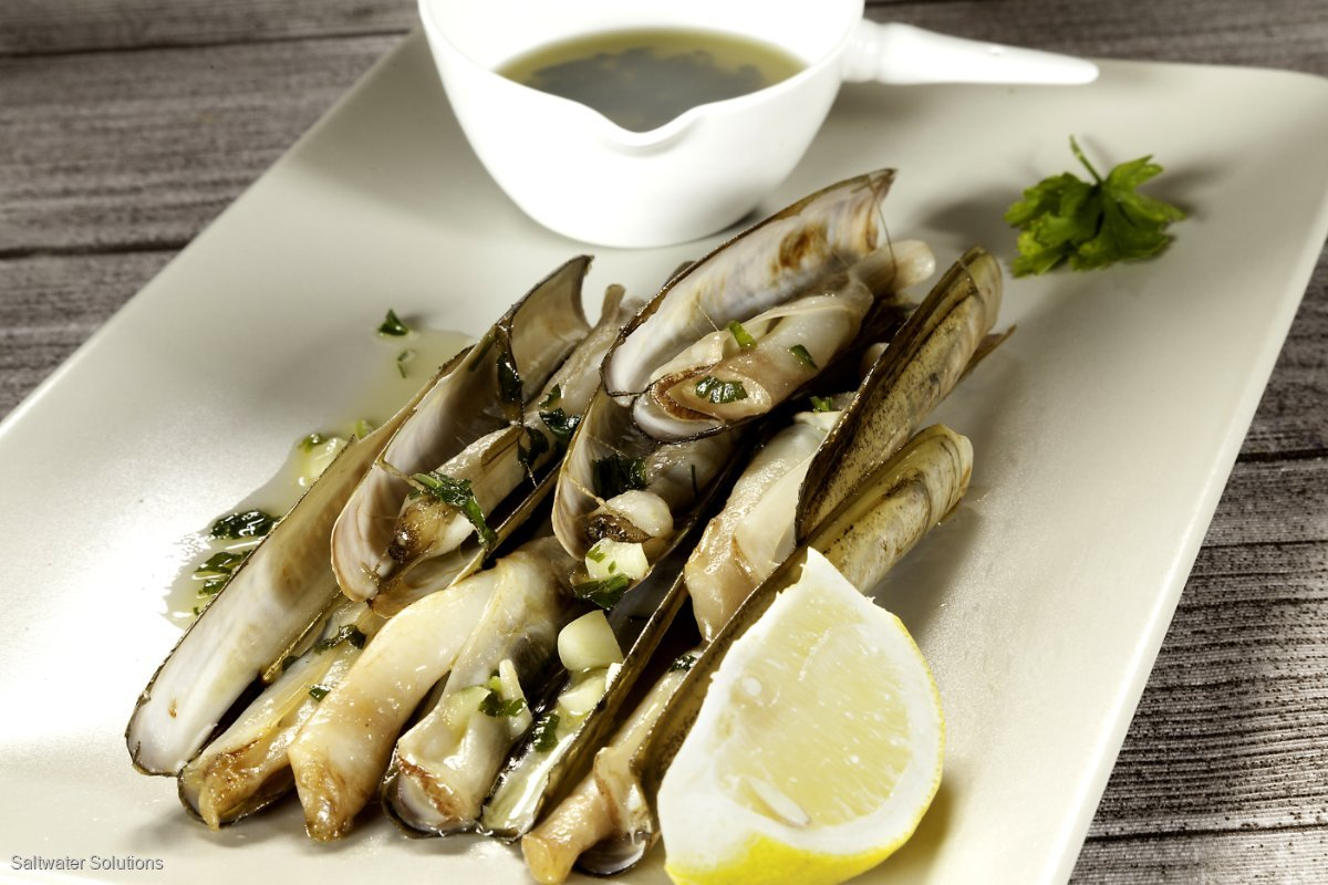 Wanted: Razor clams and fish bladders.