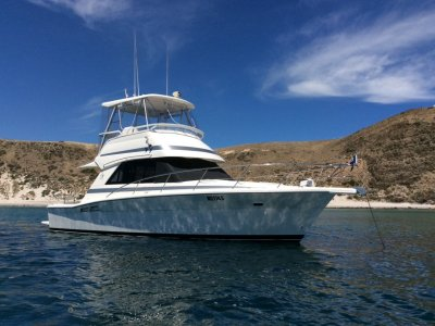 Riviera 34 Platinum (Low hours / one owner / full service records )