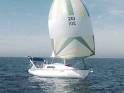Seaway 25 Trailer Sailer Yacht and Swiftco Trailer
