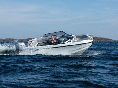 Silver Boats Tiger